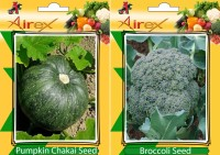 Airex Pumpkin and Broccoli Vegetables Seed (Pack Of 25 Seed Pumpkin + 25 Broccoli) Seed(25 per packet)