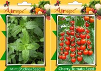Airex Mint (Pudina) and Cherry Tomato Vegetables Seed (Pack Of 20 Seed * 2 Per Packet) Seed(20 per packet)