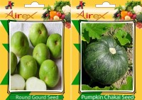 Airex Round Gourd, Pumpkin Seed(25 per packet)