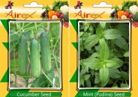 Airex Cucumber, Mint Seed(15 per packet)