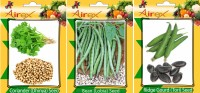 Airex Coriander, Lobia and Ridge Gourd Vegetables Seed (Pack Of 20 Seed Coriander + 20 Lobia + 20 Ridge Gourd Seed) Seed(20 per packet)