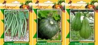 Airex Lobia, Banga and Pumpkin Vegetables Seed (Pack Of 20 Seed Lobia + 20 Banga + 20 Pumpkin Seed) Seed(20 per packet)