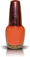 AKSHAT Splash Nail Enamel, 18ml NUDE NUDE(18 ml) - Price 57 43 % Off