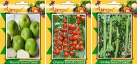 Airex Round Gourd, Cherry Tomato and Snake Gourd Vegetables Seed (Pack Of 20 Seed Round Gourd + 20 Cherry Tomato + 15 Snake Gourd Seed) Seed(20 per packet)