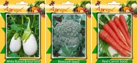 Airex White Round Brinjal, Red Carrot and Broccoli Vegetables Seed + Humic Acid Fertilizer (For Growth of All Plant and Better Responce) 15 gm Humic Acid +Pack Of 30 Seed White Round Brinjal + 30 Red Carrot + 30 Broccoli Seed Seed(30 per packet)