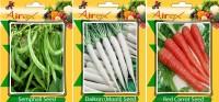 Airex Semphali, Daikon, Red Carrot Vegetables Seed (Pack Of 15 Seed Semphali + 15 Daikon + 15 Red Carrot Seed) Seed(15 per packet)