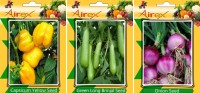 Airex Capsicum Yellow, Onion, Green Long Brinjal Vegetables Seed (Pack Of 20 Seed Capsicum Yellow + 20 Onion + 20 Green Long Brinjal Seed) Seed(20 per packet)