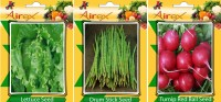 Airex Lettuce, Drum Stick, Turnip Red Ball Vegetables Seed + Humic Acid Fertilizer (For Growth of All Plant and Better Responce) 15 gm Humic Acid + Pack Of 30 Seed Lettuce + 15 Drum Stick + 30 Turnip Red Ball Seed Seed(30 per packet)