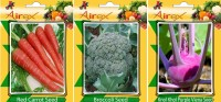Airex Red Carrot, Broccoli, Knol Khol Purple Viena Vegetables Seed (Pack Of 20 Seed Red Carrot + 20 Broccoli + 20 Knol Khol Purple Viena Seed) Seed(20 per packet)