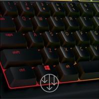 Razer Cynosa Chroma Multi-color Membrane Wired USB Gaming Keyboard