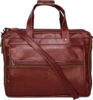 Bagged for Good BFG024MAR Multipurpose Bag(Maroon, 39 L)