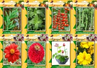 Airex Cluster Bean, Mint (Pudina), Tomato Cherry, Snake Gourd, Tithonia, Red Zinnia, Lotus and Yellow Cosmos Seed (Pack Of 15 seed * 4 Per Pkts of Vegetables) + (Pack Of 15 Seed * 4 Per Pkts Flower) Seed Seed(15 per packet)