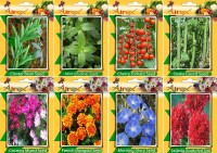 Airex Cluster Bean, Mint (Pudina), Tomato Cherry, Snake Gourd, Cosmos Mixed, French Marigold, Morning Glory and Gaillardia Double Red Seed (Pack Of 50 seed * 3 Per Pkts of Vegetables + 15 Snake Gourd) + (Pack Of 50 Seed * 4 Per Pkts Flower) Seed + Get 2 packet Of Flower Seed Free Seed(50 per packet)
