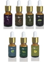 Maverick Pure 7 essential oil pack with dropper Lavender, Rosemary, Tea Tree, Peppermint, Thyme, Cedar wood and Lemon(10 ml) - Price 1048 82 % Off