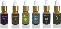 Maverick Pure Lavender, Rosemary, Cedarwood, Thyme, Peppermint & Lemon essential oil 6 in 1 pack with dropper(10 ml) - Price 840 83 % Off