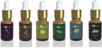 Maverick Pure Lavender, Cedarwood, Thyme, Peppermint, Lemon & Tea Tree essential oil 6 in 1 pack with dropper(10 ml) - Price 870 82 % Off