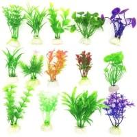 Elif Imported Aquarium Grass Plant Seed(50 per packet)