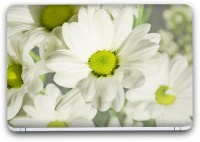 Flipkart SmartBuy Enchanting White Flower 10 Vinyl Laptop Skin (Avery Vinyl, Matte Laminated, 15 x 10 inches) Vinyl Laptop Decal 15.6