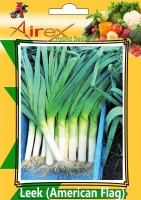 Airex Leek (American Flag) Hybrid Seed (7 Packet Of Leek (American Flag) Seed (Pack of AVG 30-40 Seed * 7 Per Packet) Seed(270 per packet)