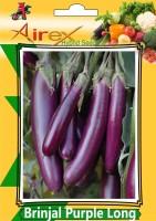 Airex Brinjal Purple Long (Hybrid) Vegetables Seed (9 Packet Of Brinjal Purple Long) Vegetables Seed (Pack of AVG 40-50 Seed * 9 Per Packet) Seed(450 per packet)