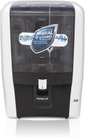 Eureka Forbes enhance green ro 7 l 7 L RO Water Purifier(BLACK & WHITE)