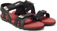 Puma Men Red Dahlia-Gray Violet-Puma Black Sports Sandals