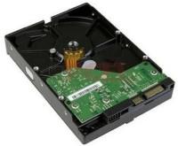 hard disk pipe line 500 GB Desktop Internal Hard Disk Drive (hdd500)