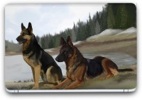 Flipkart SmartBuy Dogs Painting Vinyl Laptop Skin (3M/Avery Vinyl, Matte Laminated, 14 x 9 inches) Vinyl Laptop Decal 14.1
