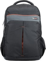 VIP RADIAN LAPTOP BACKPACK 01 BLACK 27 L Laptop Backpack(Black, Grey)