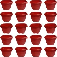 NIBBO Nibbo 3138 Plant Container Set(Pack of 20, Plastic)