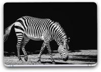 Flipkart SmartBuy Stunning Zebra Vinyl Laptop Skin (Avery Vinyl, Matte Laminated, 15 x 10 inches) Vinyl Laptop Decal 15.6