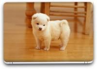 Flipkart SmartBuy Cute Puppy Vinyl Laptop Skin (Avery Vinyl, Matte Laminated, 13 x 8.5 inches) Vinyl Laptop Decal 13.3