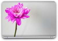 Flipkart SmartBuy Pink Flower Vinyl Laptop Skin (3M/Avery Vinyl, Matte Laminated, 15 x 10 inches) Vinyl Laptop Decal 15.6