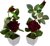 Fancymart Classic White Rose Artificial Flower  with Pot(22 inch, Pack of 2)