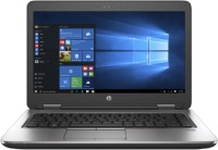 HP G2 APU Quad Core A10 7th Gen - (8 GB/500 GB HDD/Windows 10 Pro) 445 G2 -A10-7300 Laptop(14.1 inch, Black)