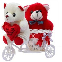 ME&YOU Romantic Cycle Teddy Return Gifts for Wife Girlfriend Sister On Birthday, Anniversary, Rakhi, Valentine's Day IZ18TCy-001 Soft Toy Gift Set