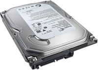 Seagate Pipeline HD 500 GB Desktop Internal Hard Disk Drive (ST3500312CS)