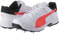 Puma Cricket Shoes For Men(Multicolor)