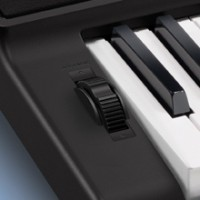 Casio CT-X870INC2 CT-X870IN Digital Portable Keyboard