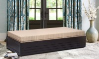 Auspicious Home Premium Double Engineered Wood Sofa Bed(Finish Color - Beige Mechanism Type - Pull Out)