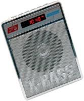 CRETO New SL-413 Portable Fm/Radio Support USB pen-drive, aux memory card FM Radio(Silver White)