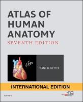 Atlas of Human Anatomy International Edition(English, Paperback, MD Netter Frank H.)