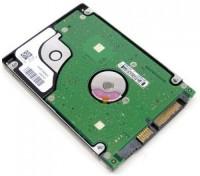 Expertronics pro 160 GB Laptop Internal Hard Disk Drive (RFB-160-LPT)