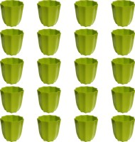 NIBBO Nibbo 3132 Plant Container Set(Pack of 20, Plastic)