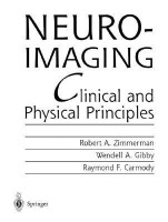 Neuroimaging(English, Hardcover, unknown)