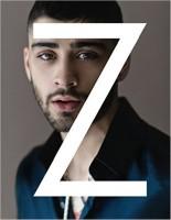 Zayn(English, Hardcover, ZAYN)