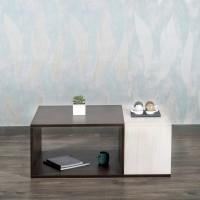 Akshni Zuri Engineered Wood Coffee Table(Finish Color - Oak & Walnut)