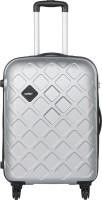 Safari Mosaic Check-in Luggage - 30 inch(Silver)