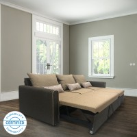 Sofame Ritz Double Solid Wood, Metal Sofa Bed(Finish Color - Beige Mechanism Type - Pull Out)