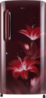 View LG 215 L Direct Cool Single Door 5 Star Refrigerator(Ruby Glow, GL-B221ARGY) Price Online(LG)